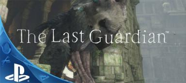 Last Guardian psn аккаунт